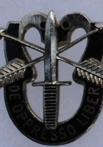 Metal Insignia
