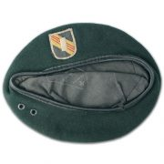 Wolf issued beret (2) - Copy
